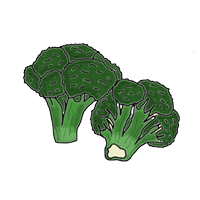 semena za zelenjavni vrt, semena zelenjave, profesionalna semena za vrtičkarje, semena za vrt, Agrotech - Brokoli